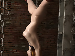 3D babes scream in pang and pleasure in hot BDSM represent